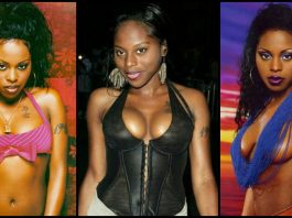 49 Hot Pictures Of Foxy Brown Which Are Sexy As Hell
