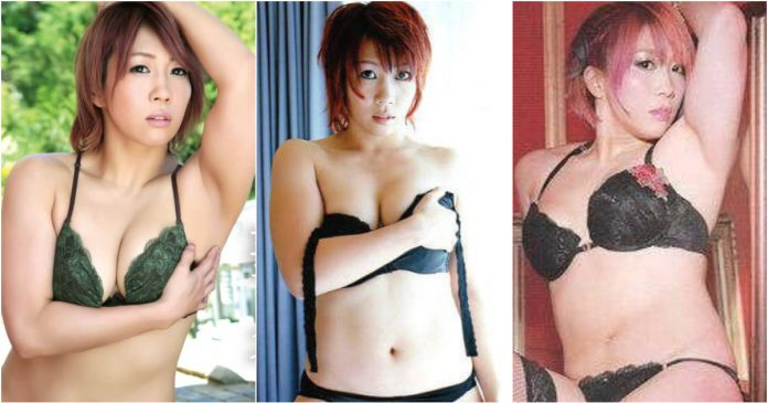 49 Sexy Asuka Boobs Pictures Reveal WWE Diva's Majestic Big Melons