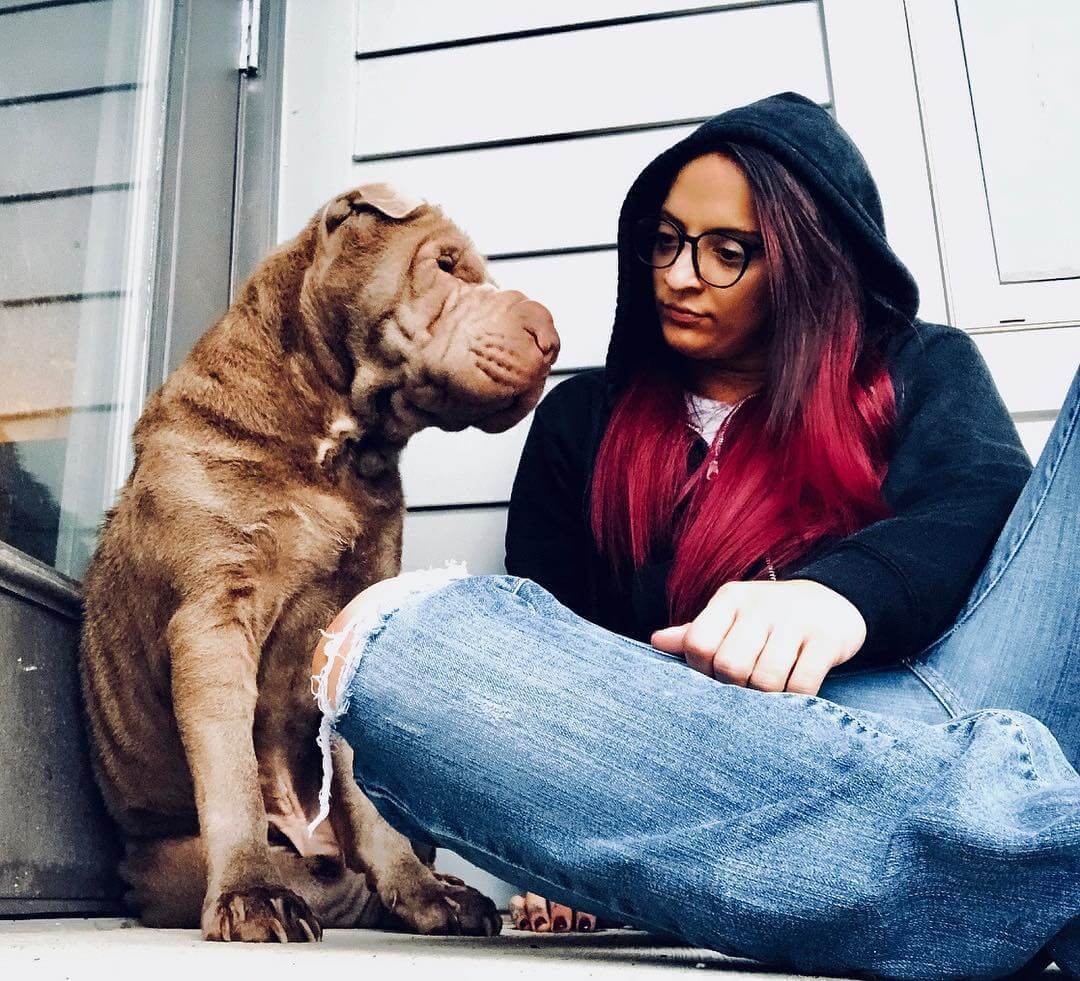 ruby riot dog lover
