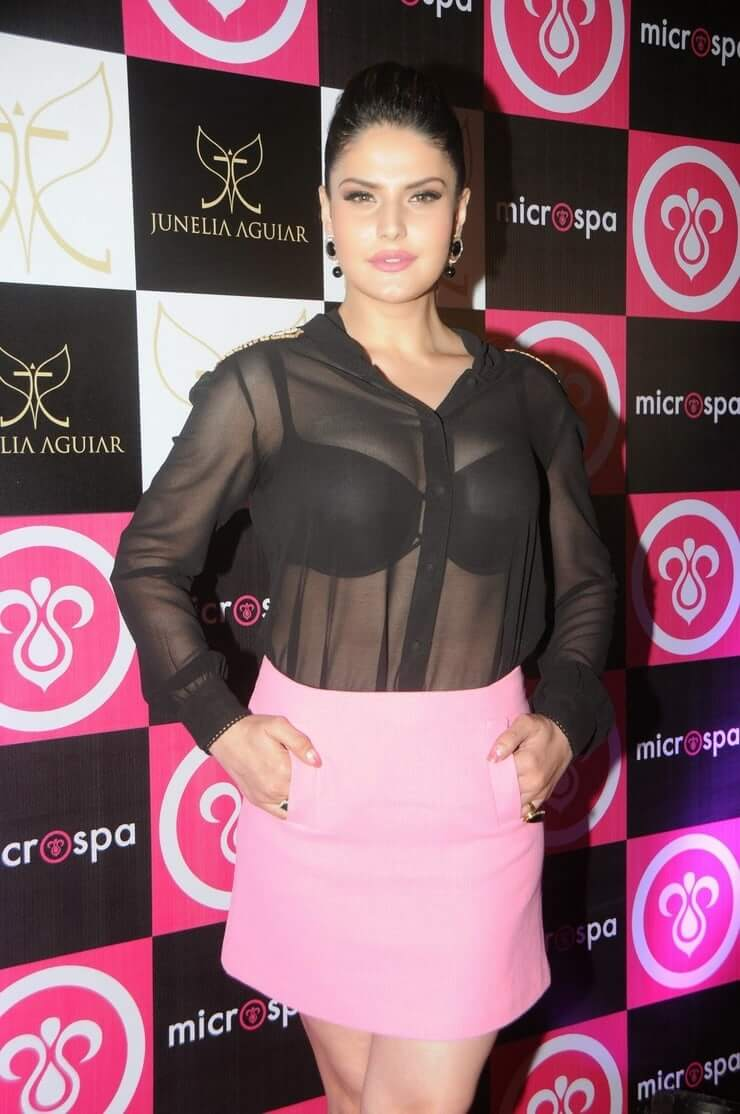zareen khan awesome picture (3)