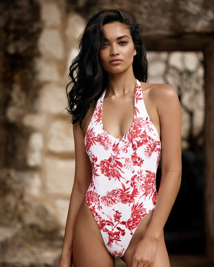 Shanina Shaik beautiful pictures