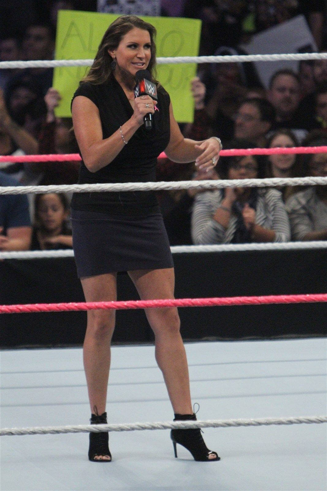 Stephanie mcmahon hot leg