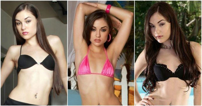 49 Hot Pictures Of Sasha Grey Magnify Her Voluptuous Sexy Body