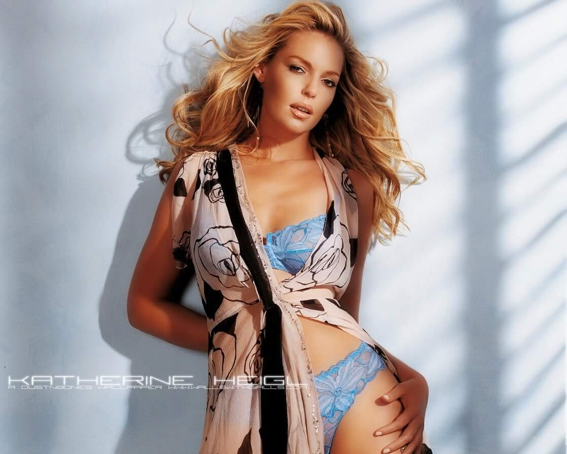 Katherine Heigl awesome picture (2)