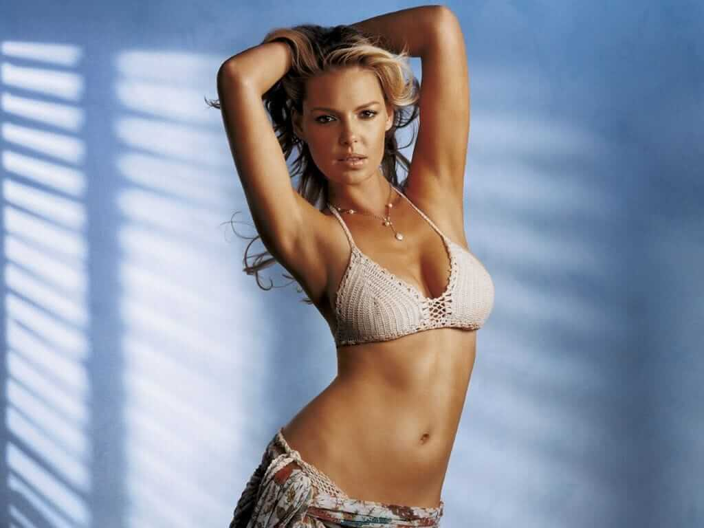 Katherine Heigl hot busty picture