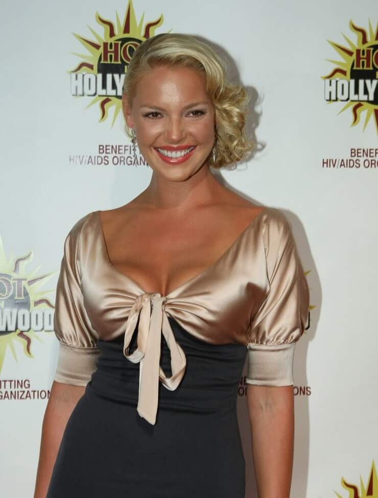 Katherine Heigl sexy busty picture