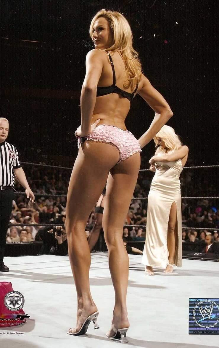 Stacy Keibler sexy ass (3)