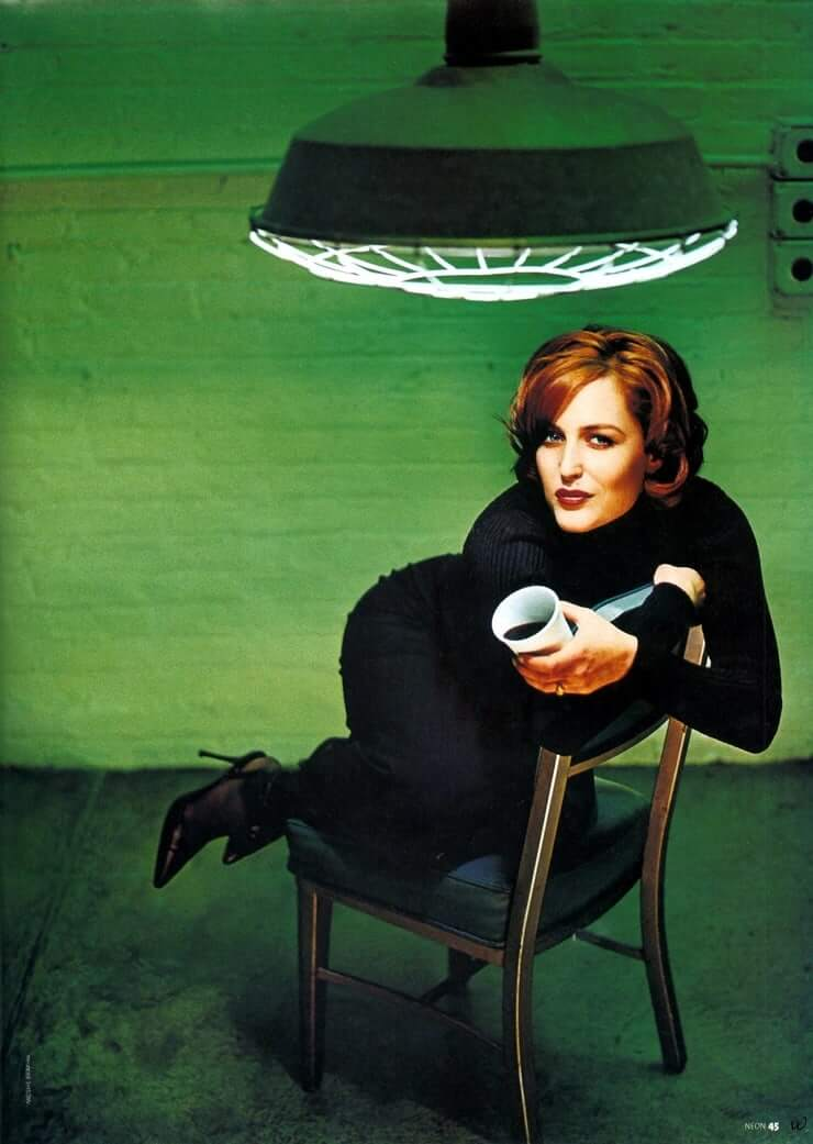 Gillian Anderson awesome (2)