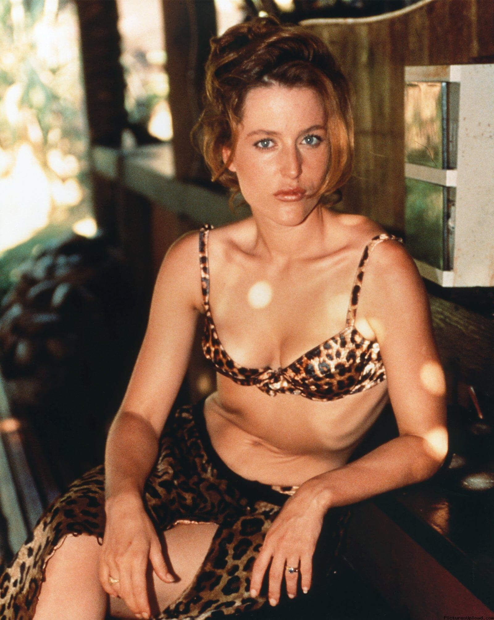 Gillian Anderson hot bikiny pictures