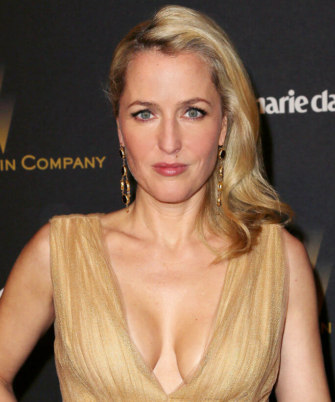 Gillian Anderson hot boobs pics (12)