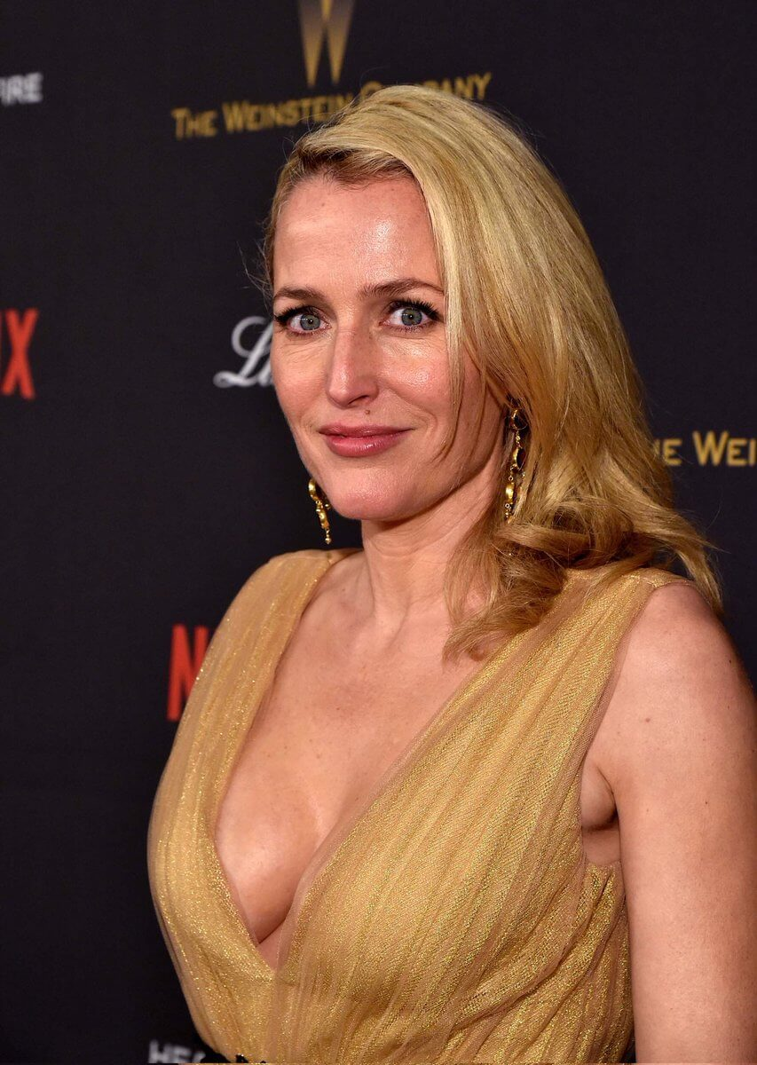 Gillian anderson boobs
