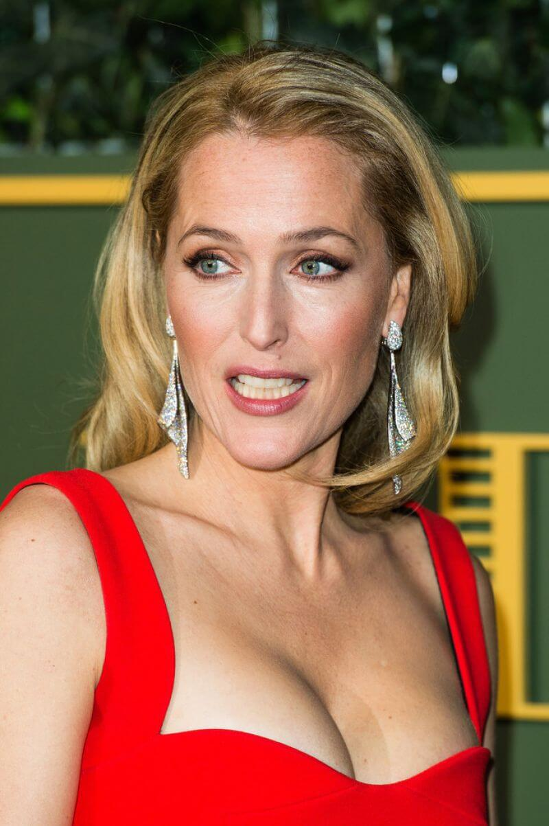 Gillian Anderson hot busty pics (3)