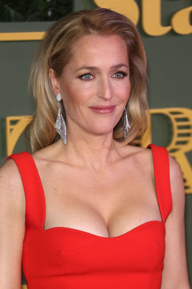 Gillian Anderson hot busty pics (5)