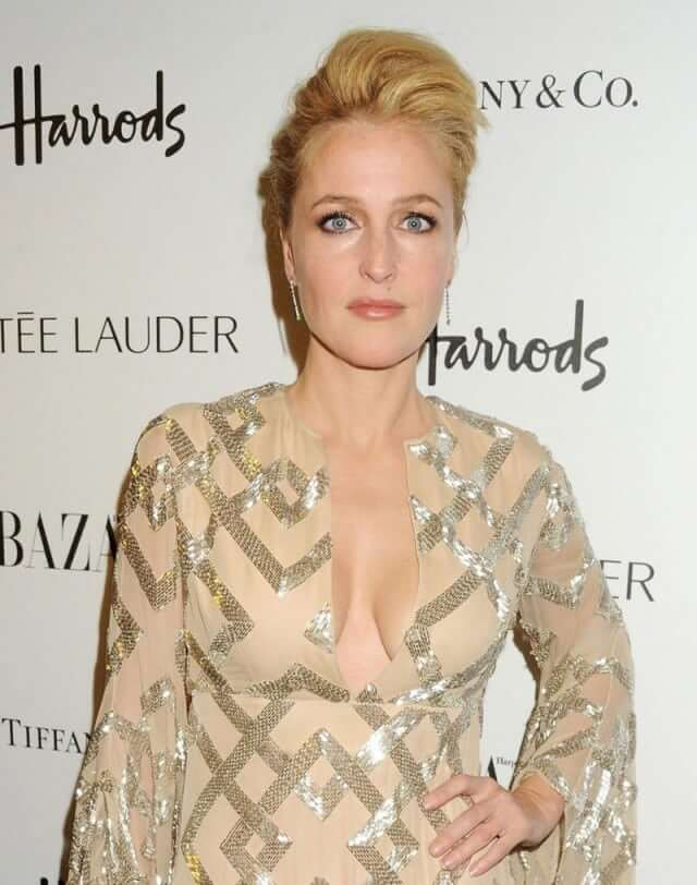 Gillian Anderson hot busty pictures (2)