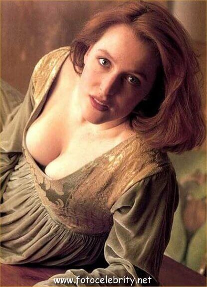 Gillian Anderson sexy boobs pics (11)