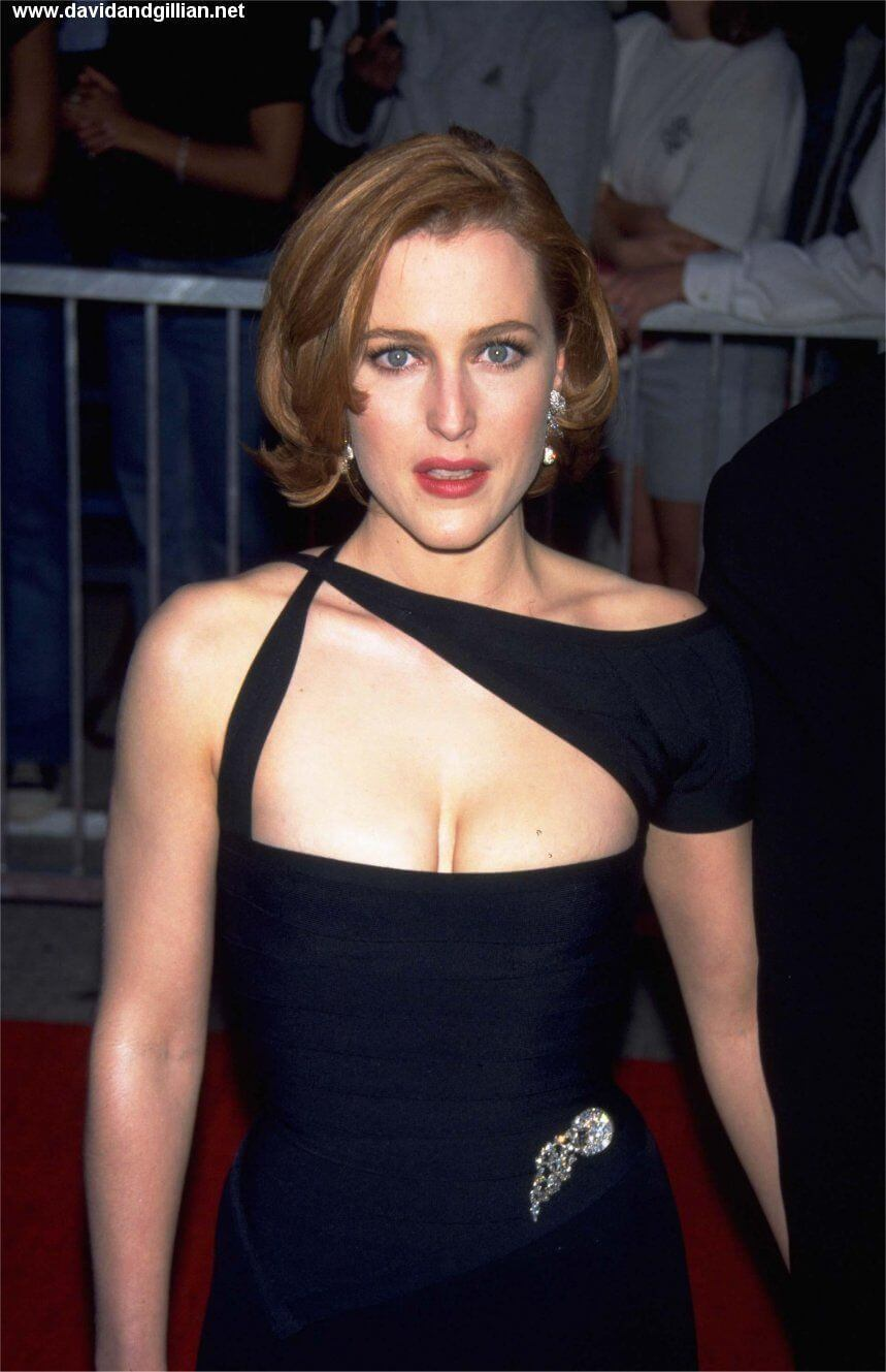 Gillian Anderson sexy boobs pics (6)