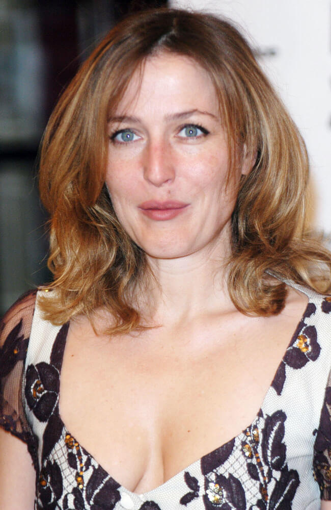Gillian Anderson sexy boobs pics (9)