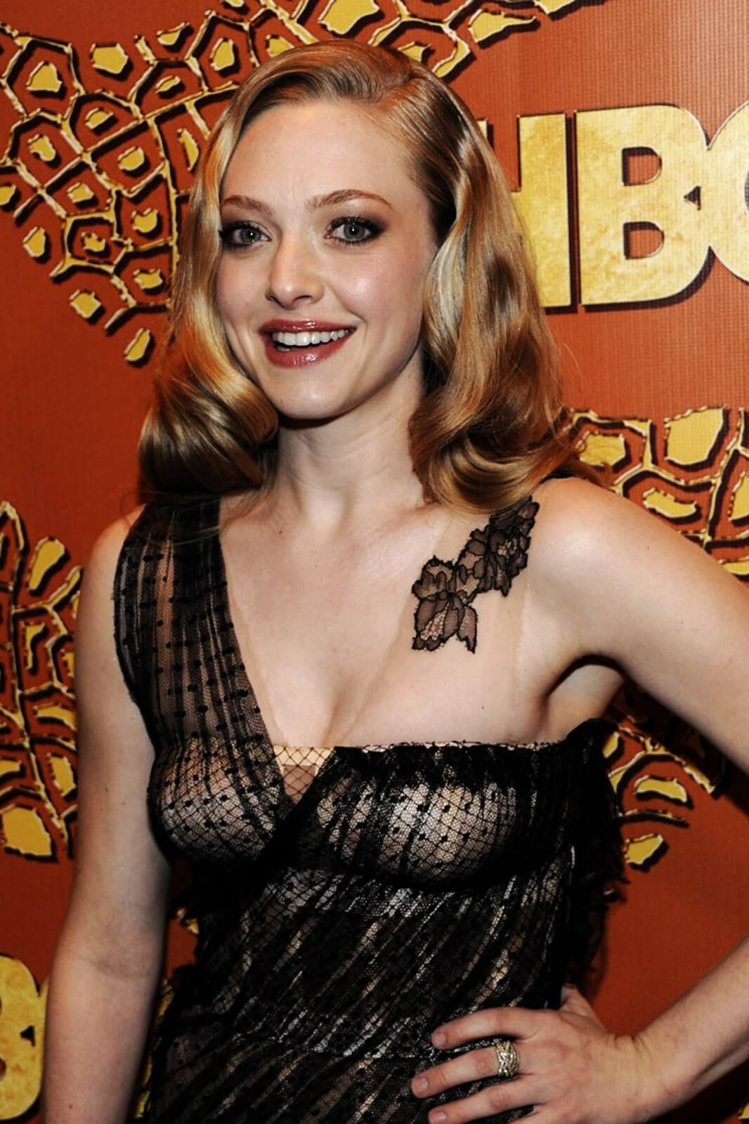 amanda seyfried boobs pictures (4)