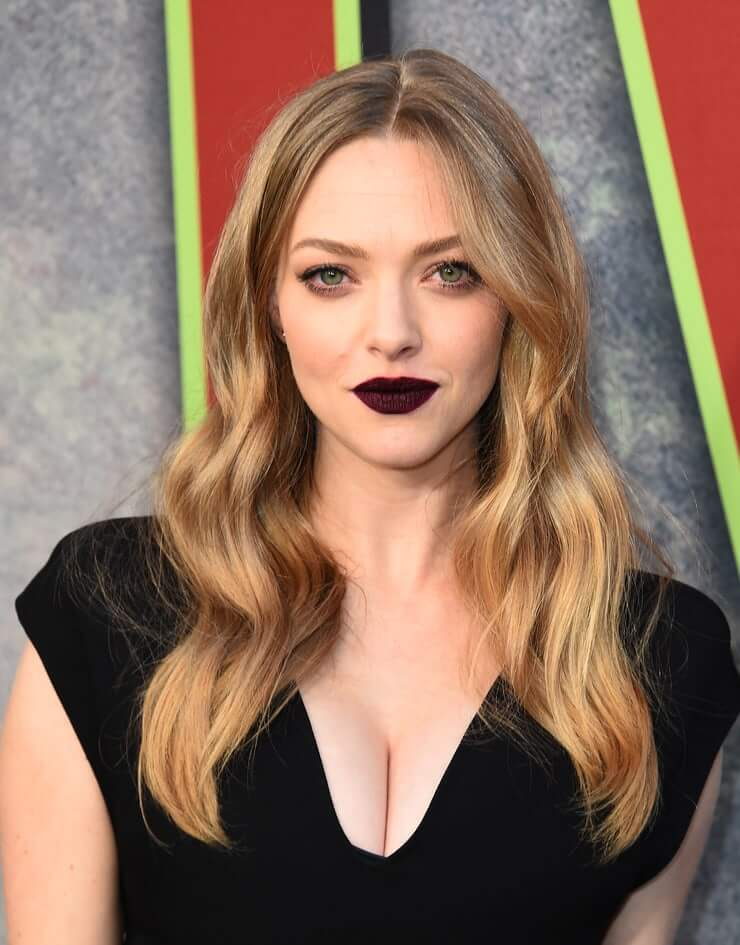 amanda seyfried hot pictures (3)