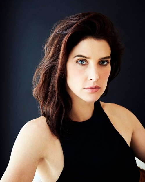 cobie smulders awesome pics (2)