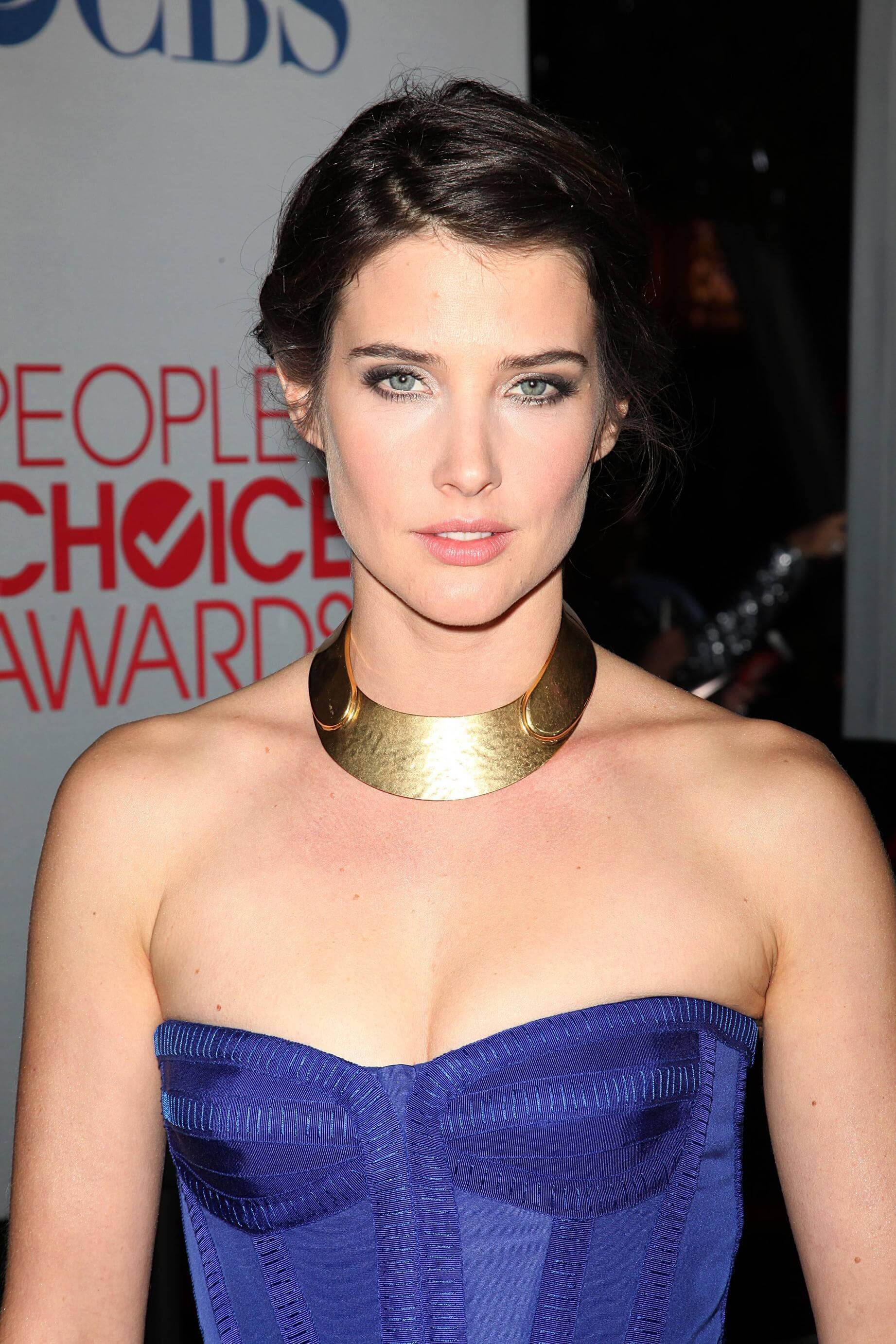 cobie smulders sexy busty pictures