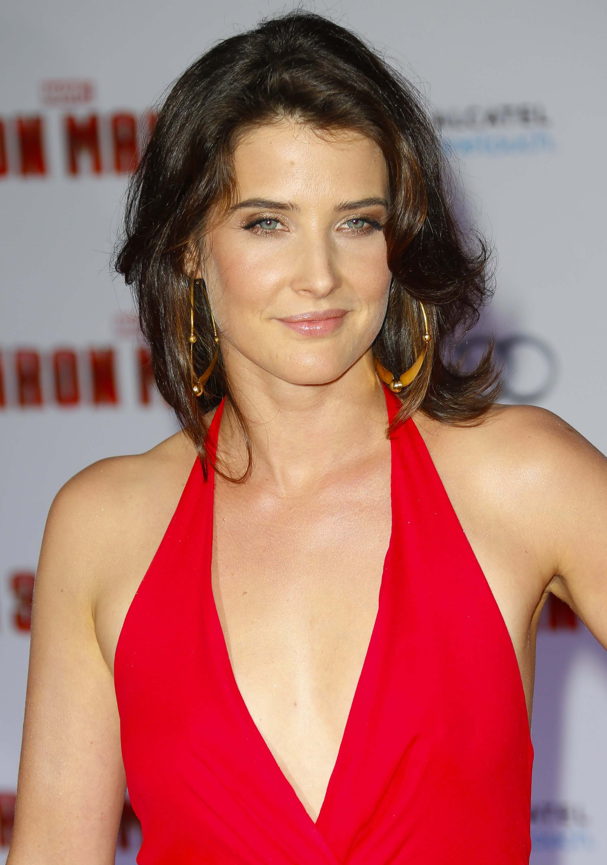 cobie smulders sexy cleavage photo