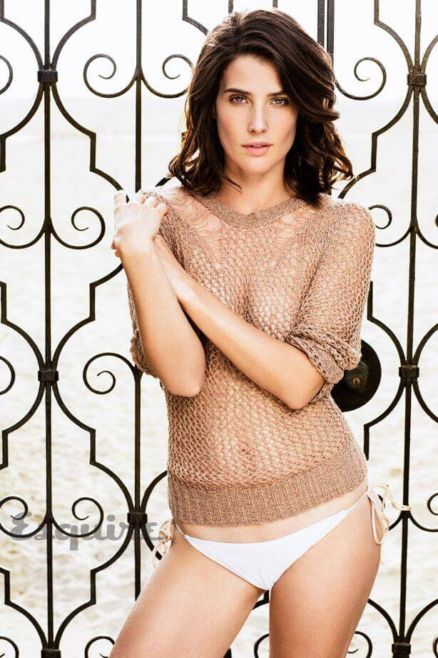 cobie smulders sexy nude picture