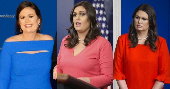 40 Sarah Sanders Hot Pictures Will Drive You Nuts For Her