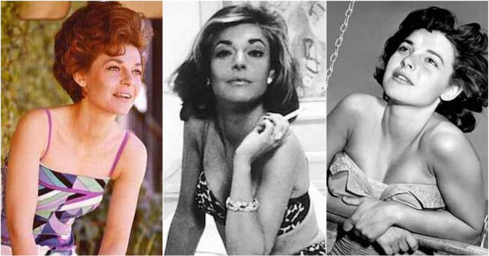 49 Anne Bancroft Hot Pictures Are So Hot That You Will Burn