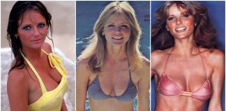 49 Cheryl Tiegs Hot Pictures Will Drive You Nuts For Her