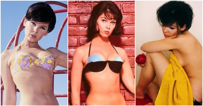 49 Hot Pictures Of Yvonne Craig Prove That God Took Time To Carve Her Sexy Body