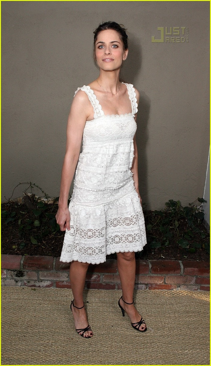 Amanda Peet Hot Pictures 49 hot pictures of amanda peet which will make you think