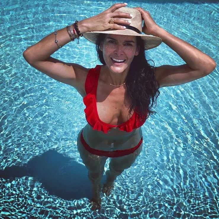 Angie Harmon boobs pictures