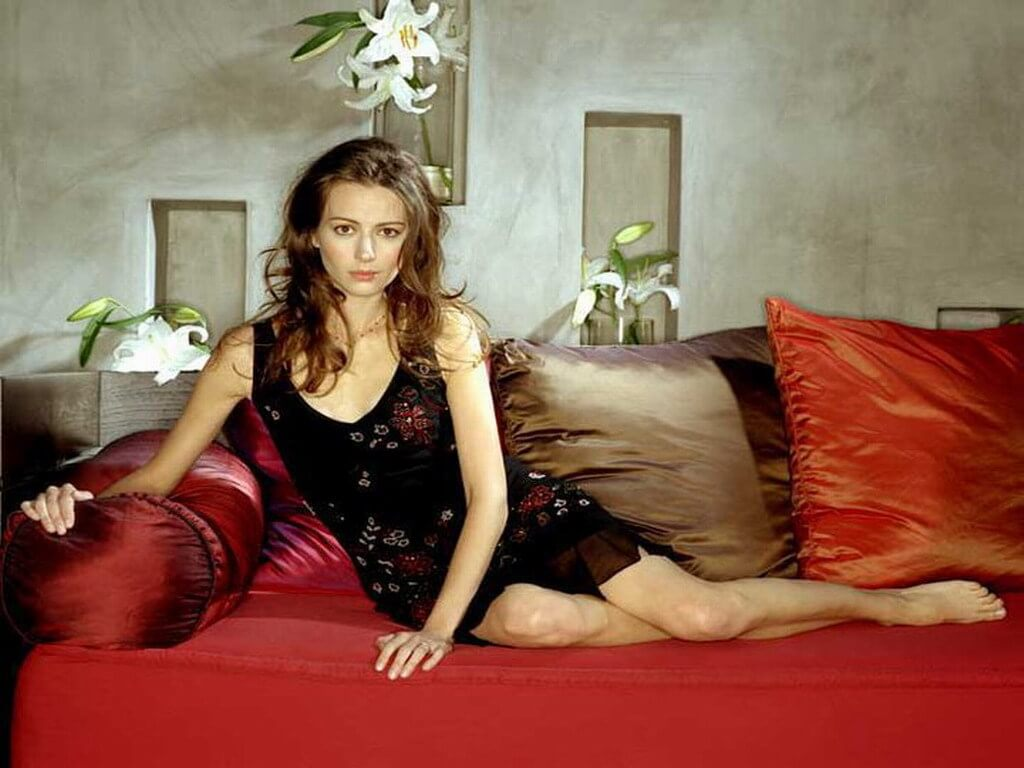 Amy Acker Hot Pics 49 hottest amy acker boobs pictures show why everyone loves