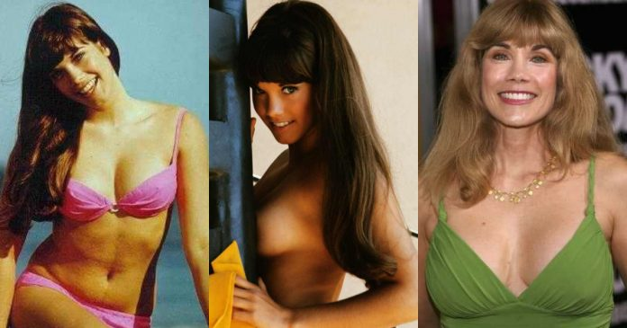 49 Hottest Barbie Benton Bikini Pictures Uncover Her Awesome Body