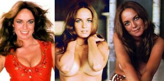 49 Hottest Catherine Bach Big Boobs Pictures That Make Certain To Make You Her Greatest Admirer