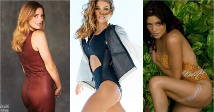 49 Hottest Ashley Greene Butt Pictures Which Will Leave You To Awe In Astonishment