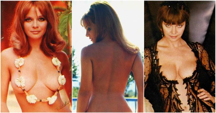 49 Nude Pictures Of Laura Antonelli Which Are Inconceivably Beguiling