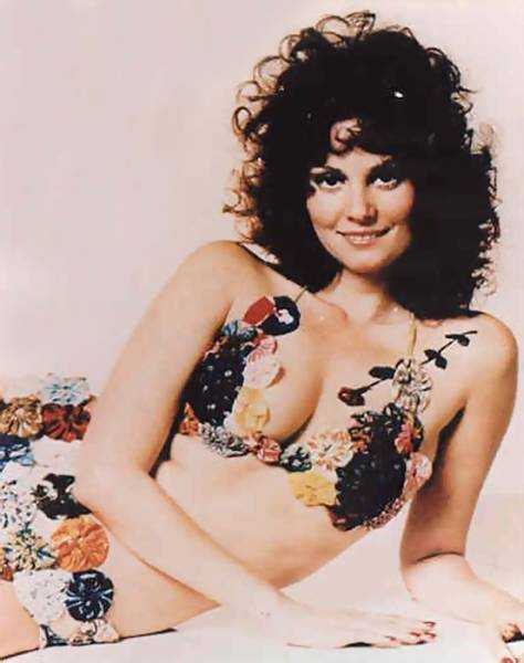 Lesley Ann Warren nipples