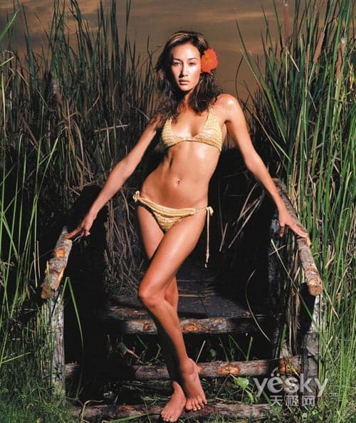 49 Nude Pictures Of Maggie Q Are A Genuine Exemplification -4460