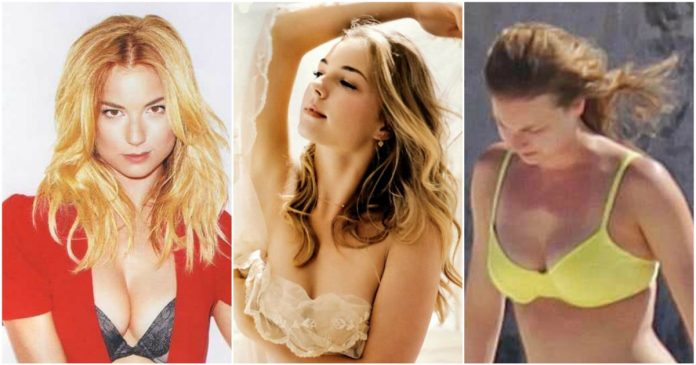 50 Nude Pictures Of Emily VanCamp Which Will Make You Swelter All Over