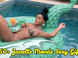 54 Sexy Gif Of Janelle Monáe Which Will Make You Swelter All Over