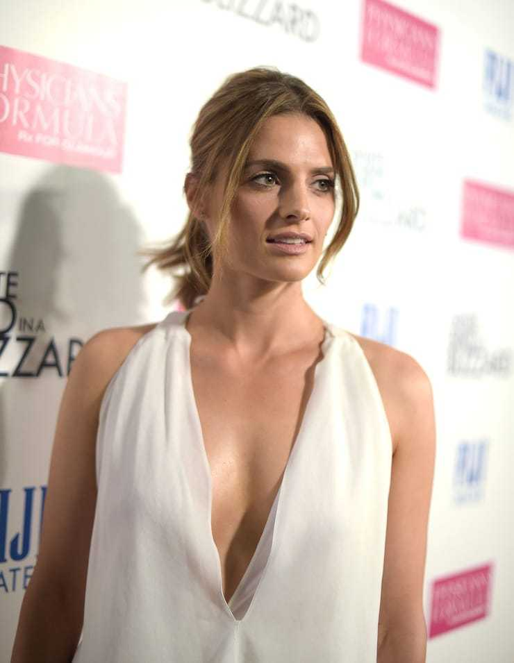 46 Nude Pictures Of Stana Katic Demonstrate That She Is