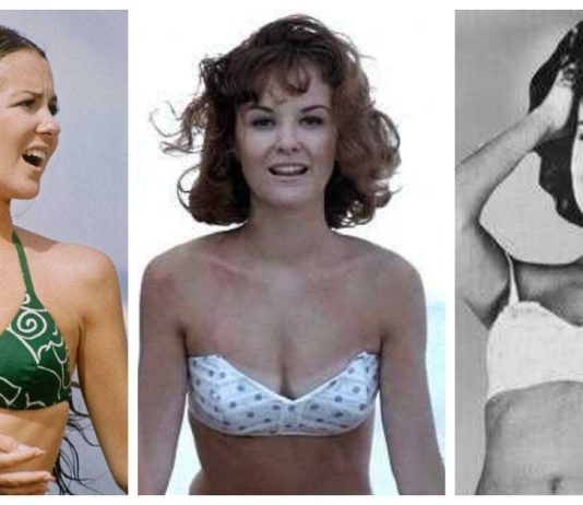 42 Shelley Fabares Nude Pictures Can Make You Submit To Her Glitzy Looks