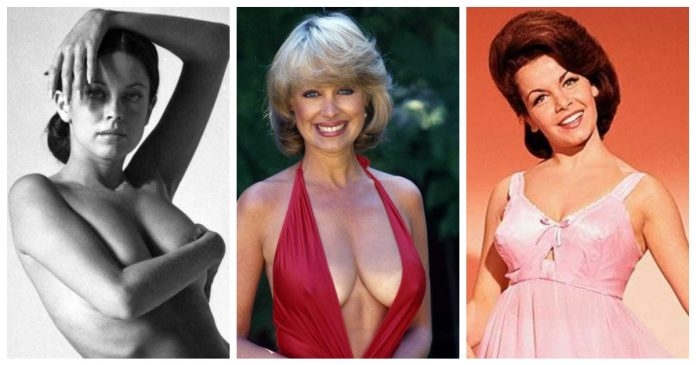 52 Annette Funicello Nude Pictures Show Off Her Dashing Diva Like Looks