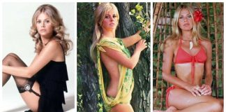 49 Hottest Britt Ekland Big Butt Pictures Demonstrate That She Has Most Sweltering Legs
