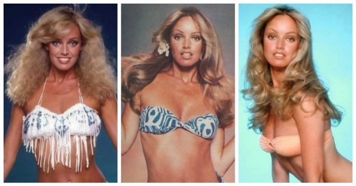 49 Susan Anton Nude Pictures Can Make You Submit To Her Glitzy Looks