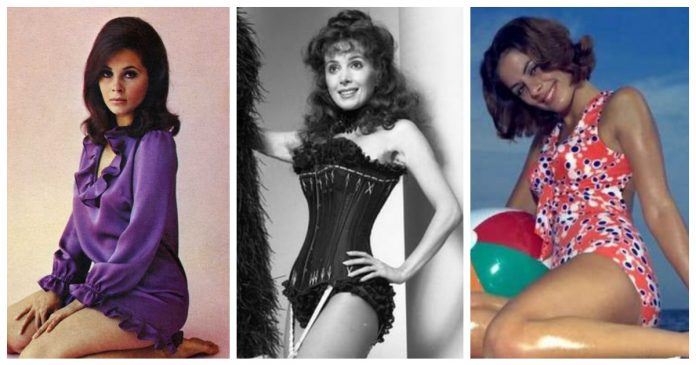 51 Hottest Barbara Parkins Big Butt Pictures Are Simply Excessively Enigmatic