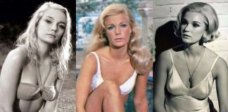 51 Sexy Yvette Mimieux Boobs Pictures Will Expedite An Enormous Smile On Your Face