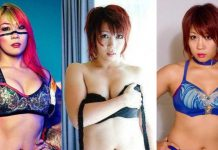 51 Hottest Asuka Bikini Pictures Are Excessively Damn Engaging
